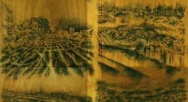 חווה גילון